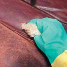 how to restore a leather sofa reader s digest
