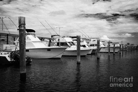 charter boat row key west charter fishing boats charter boat row city marina key