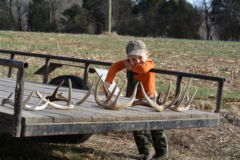 Best Places To Find Shed Antlers by Top 6 Best Places To Find Shed Antlers Muddy Outdoors