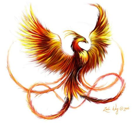 phoenix tattoo designs color nice phoenix tattoo design in fire colors