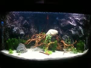 d 233 cor fond aquarium juwel