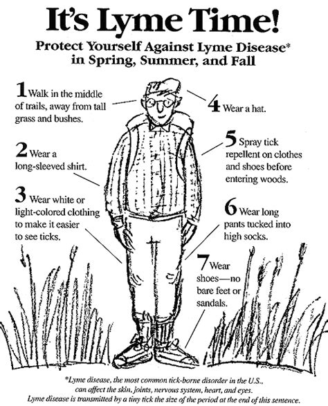What To Expect When Detoxing From Lymes Disease by My Lyme Awareness