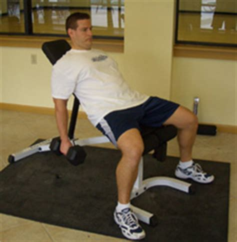 critical bench exercises incline dumbbell curl bicep exercise video exle