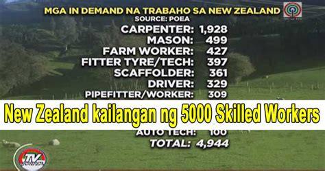 new zealand job new zealand has 5000 job openings salary around 100k