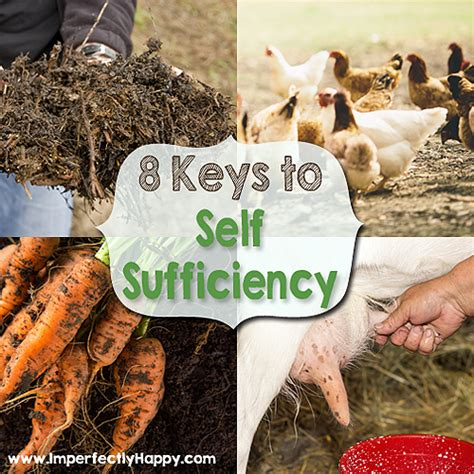 backyard self sufficiency backyard homestead archives page 14 of 30 imperfectly