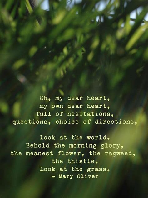 best environment poems poems poets poetry resources best 25 simple poems ideas on pinterest scar quotes