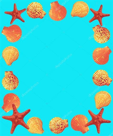 cornice conchiglie cornice di conchiglie e stelle marine foto stock