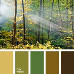forest colors colour of forest color palette ideas