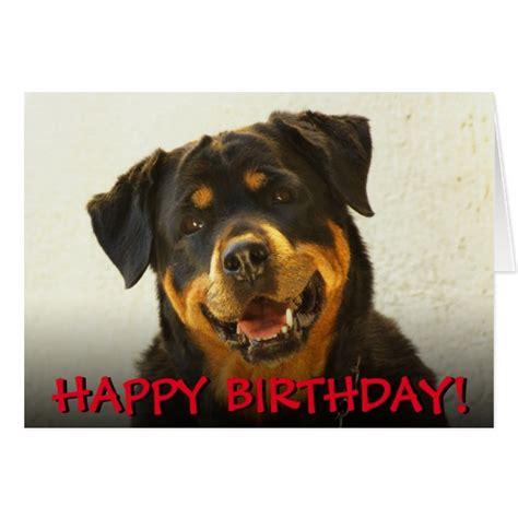 rottweiler birthday wishes rottweiler birthday card zazzle