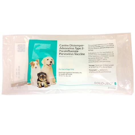 5 in 1 vaccine for puppies jec 5 vaccine 1 ds with syringe for dogs and puppies