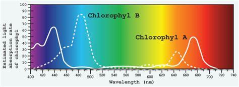 best light for vegetative growth 135w uv lighthouse hydro blackstar led grow light 3 watt