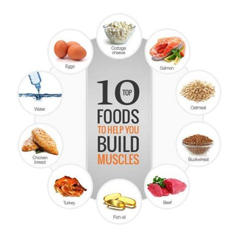 bodybuilding and healthy fats top 10 foods to help you build healthy fitness
