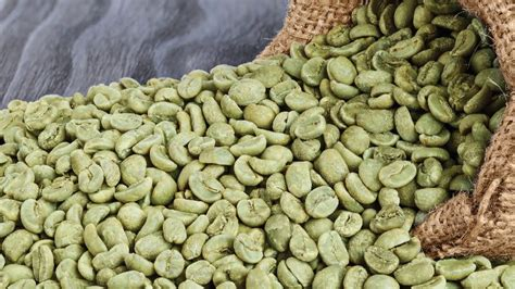 Green Coffee Bean Handel green bean coffee extract for weight loss