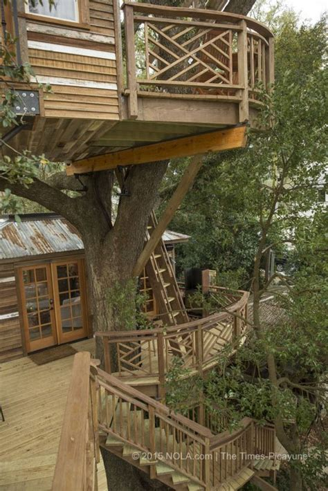 todd graves house raising canes the treehouse and raising on pinterest