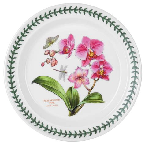 Botanic Gardens Portmeirion Portmeirion Botanic Garden Set Of 6 Moth Orchid Dinner Plates Portmeirion Usa