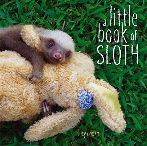 be a sloth ebook a book of sloth book by cooke official