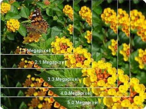 mega pixel megapixel texel y voxel