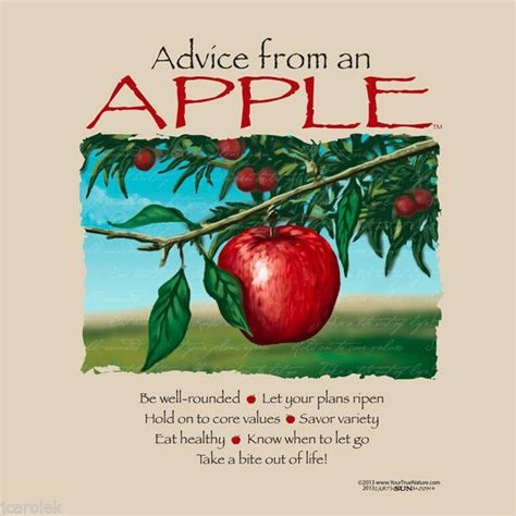apple quotes best 25 apple quotes ideas on classic quotes