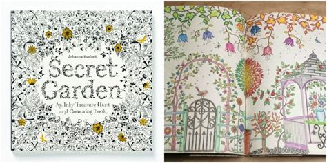 secret garden colouring book qbd coloring books johanna basford secret garden