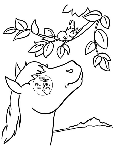 coloring pages of animals and birds flying bird bird coloring pages bird coloring