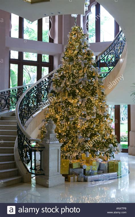christmas tree shop india india karnataka bangalore leela palace hotel tree stock photo 8925287 alamy