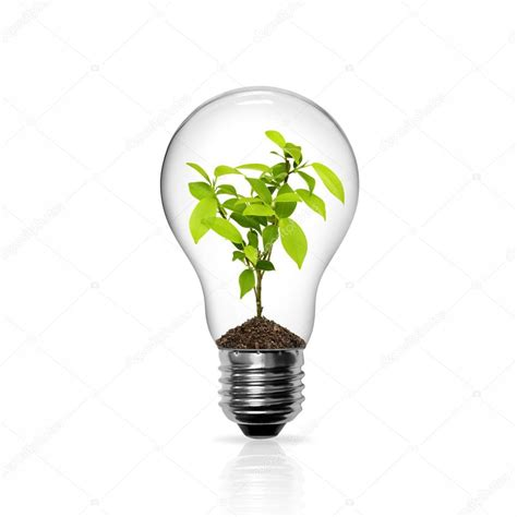light bulb with green tree inside stock photo 169 sarunyu