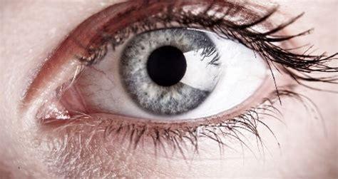 imagenes de ojos de jaguar cuidado de los ojos en personas diab 233 ticas salud180