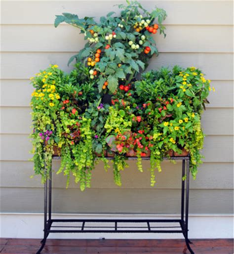 window box stand patio stand for 44 quot windowbox contemporary outdoor