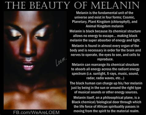 melanin fluoride and the pineal gland psychedelic adventure