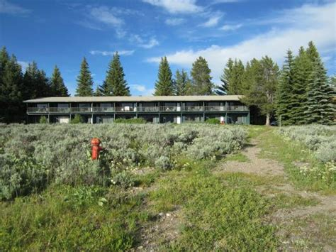 Grians View Cottages And Units by Mountain View Cottages Picture Of Jackson Lake Lodge