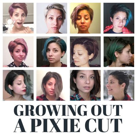 hairstyles while growing out pixie cut month by month timeline of all the stages of growing out a