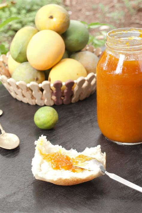 Mango Recipes   The Idea Room