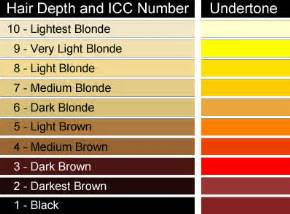 hair colors for yellow undertones the of colour colour theory for hairdressing hair