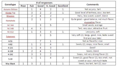 Team Rubus Black And Red Raspberry Taste Test Taste Test Survey Template