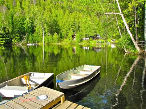 Cozy Cabins Nature Resort by Docks And Rope Swing Picture Of Cozy Cabins Nature