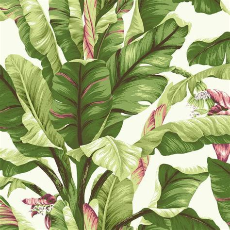 wallpaper banana leaf banana leaf wallpaper in green and pink design by york