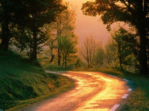 most beautiful roads in america chitra buzz 10 most beautiful indian roads