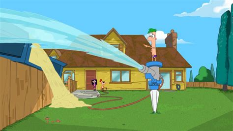 Phineas And Ferb Backyard by Backyard Phineas And Ferb Wiki Your Guide To