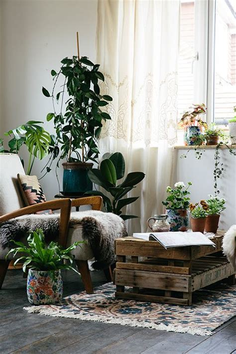 Living Room Corner Plants The World S Catalog Of Ideas