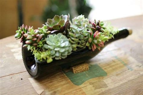 Indoor Modern Planters wine bottle succulent planter easy diy video tutorial