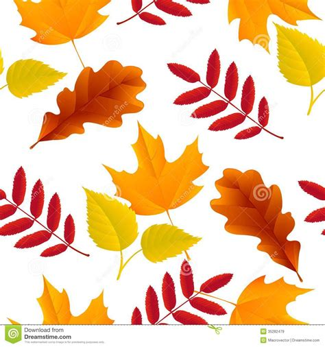 Seamless Autumn Leaves Pattern Royalty Free Stock Images