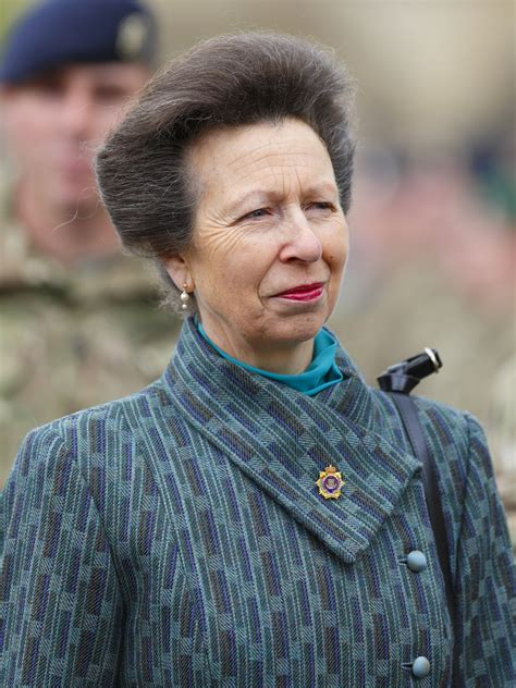 princess anne great aunt princess anne princess royal how is new
