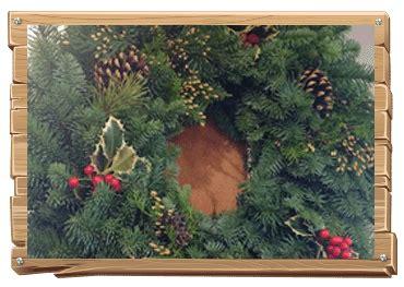 christmas tree farm sherwood oregon day tree farm u cut tree farm sherwood oregon