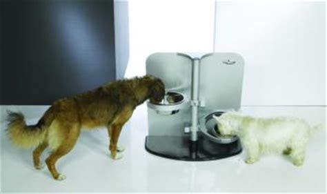 fressnapf adventkalender f 252 r hunde katzen und nagetiere - Bilder Für Den Adventskalender
