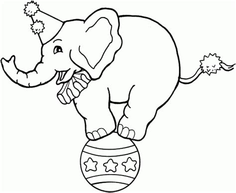 elephant 94 animals printable coloring pages circus coloring pages circus elephant on ball circus