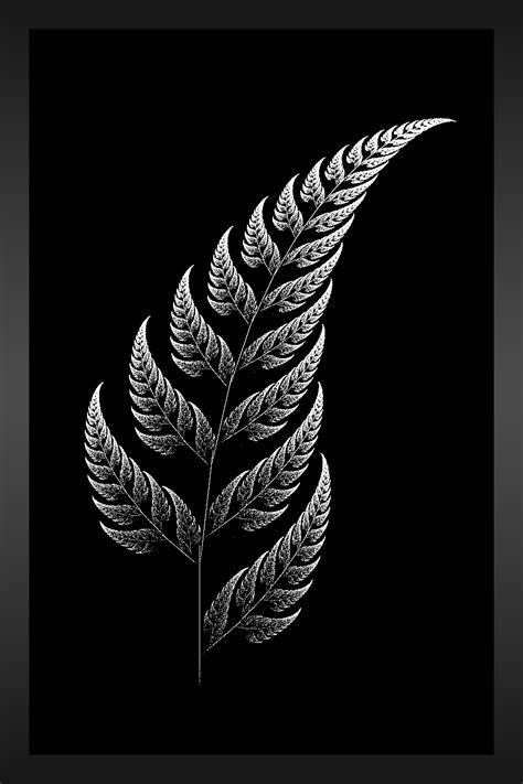 nz tattoo designs silver fern new zealand fern designs the silver fern by aeires