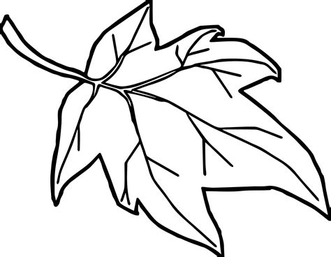fall leaf coloring pages orange autumn leaf coloring page wecoloringpage