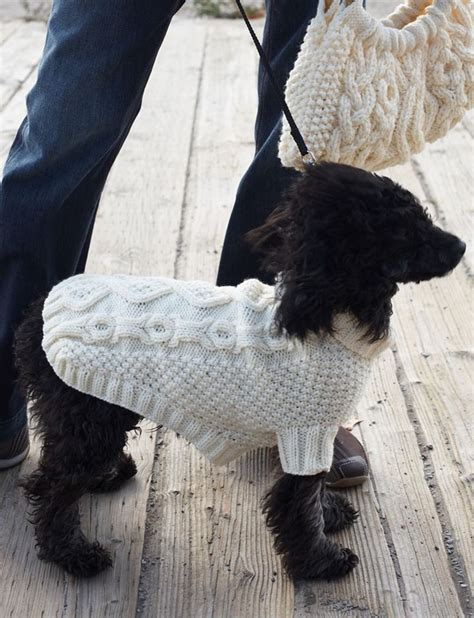 pug coat pattern 17 best images about coats on chihuahuas crochet sweater and