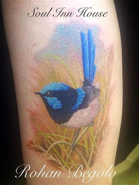 blue wren tattoo designs soul inn house blue wren