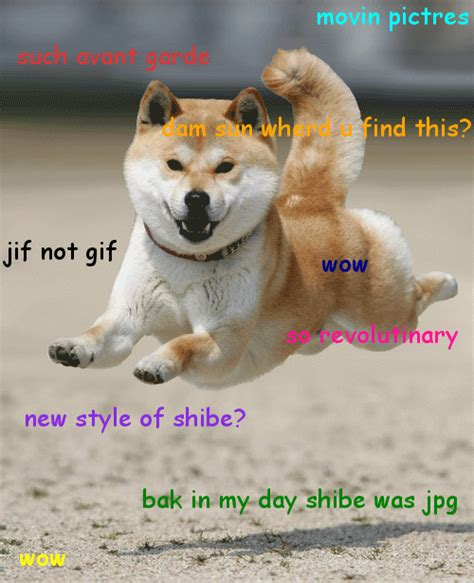 Original Doge Meme - the gallery for gt ashe maree gif